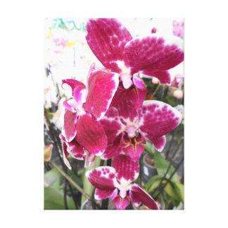 Impressão Em Tela Orquídea roxa