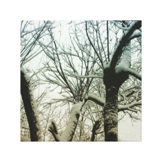 Impressão Em Tela País das maravilhas do inverno
