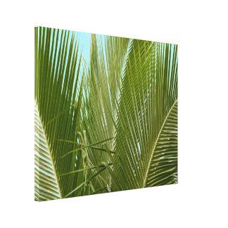 Impressão Em Tela Palmeira tropical de Havaí