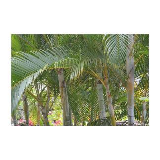 Impressão Em Tela Palmeiras tropicais de Kauai