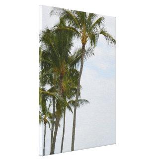 Impressão Em Tela Palmeiras tropicais em Poipu