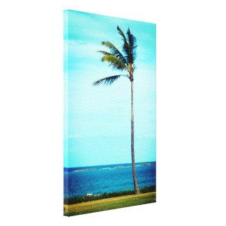 Impressão Em Tela Para sempre apenas palmeira tropical