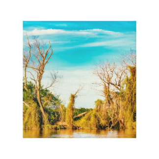 Impressão Em Tela Parana River, San Nicolas, Argentina