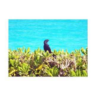 Impressão Em Tela Pássaro preto pequeno bonito