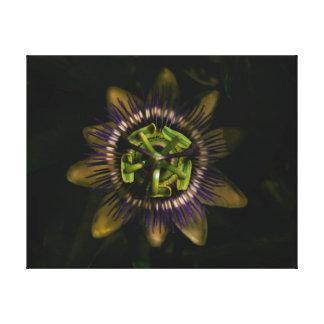 """Impressão Em Tela passiflora 16"""" X12""""/40x30 cm"""