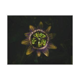 """Impressão Em Tela passiflora 24"""" x18""""/60x45cm"""