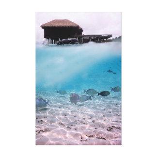 Impressão Em Tela Peixes Snorkeling do coral das aventuras de