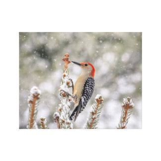 Impressão Em Tela pica-pau Vermelho-inchado 14x11 na neve