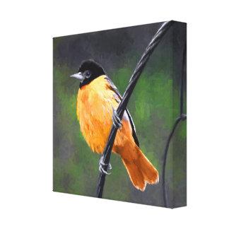 Impressão Em Tela Pintura de Oriole - arte original do pássaro