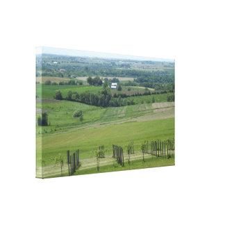Impressão Em Tela Platteville, poster do vinhedo da vinha de
