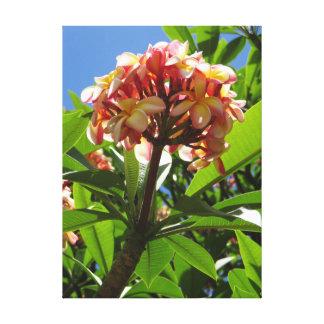 Impressão Em Tela Plumeria havaiano
