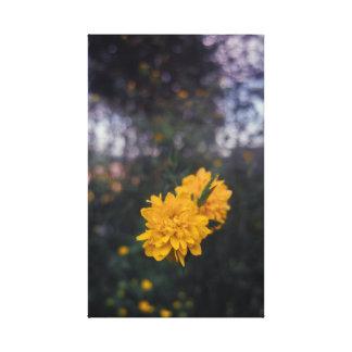 Impressão Em Tela Pompom em flor amarelo