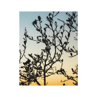 Impressão Em Tela Por do sol de Austin no inverno