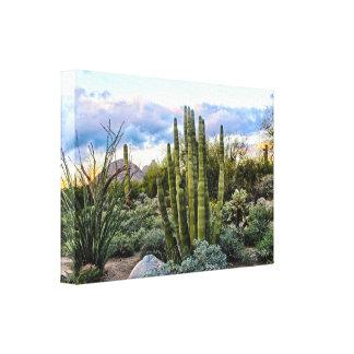 Impressão Em Tela Por do sol do Succulent de Scottsdale