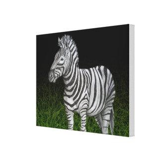 Impressão Em Tela Preto e verde da zebra
