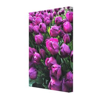 Impressão Em Tela Príncipe roxo Tulipa