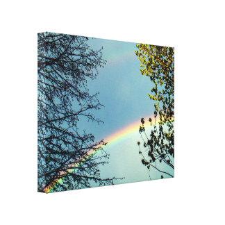 Impressão Em Tela Rainbow&Trees simples 2