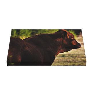 Impressão Em Tela Retrato 1 da vaca