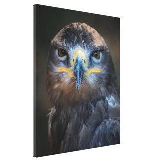 Impressão Em Tela Retrato de Eagle