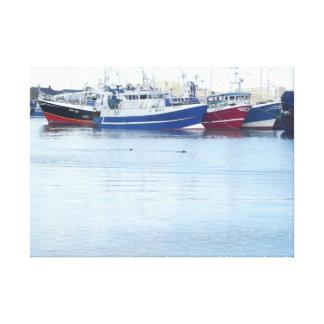 Impressão Em Tela Selos no porto de Howth em Dublin Ireland