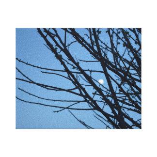 Impressão Em Tela Tela com silhueta de árvore e lua