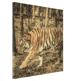 Impressão Em Tela Tigre selvagem majestoso dos animais selvagens da