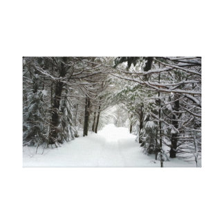 Impressão Em Tela Trajeto nevado na floresta
