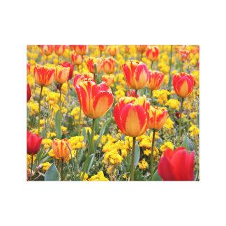 Impressão Em Tela Tulipas, amarelo brilhante e colorido e vermelho