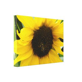 Impressão Em Tela Uma abelha ocupada