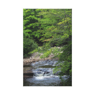 Impressão Em Tela Uma cachoeira diminuta