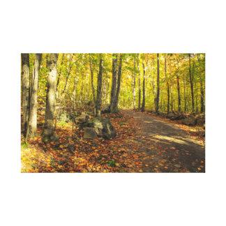 Impressão Em Tela Uma caminhada nas madeiras
