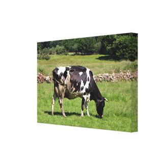 Impressão Em Tela Vaca de leiteria preta & branca, EL Camino,