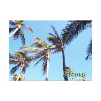 Impressão Em Tela Vento nas palmeiras