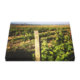 Impressão Em Tela Vinhedos do Jacuzzi nas uvas