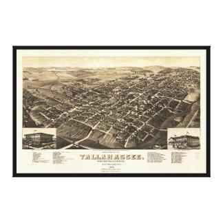 Impressão Em Tela Vista aérea de Tallahassee, Florida (1885)