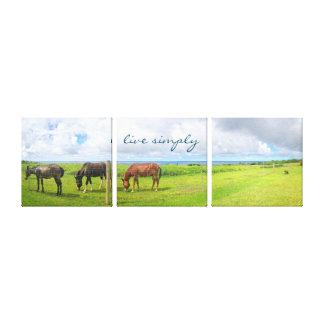 """Impressão Em Tela """"Vive simplesmente"""" a foto dos cavalos de Havaí"""