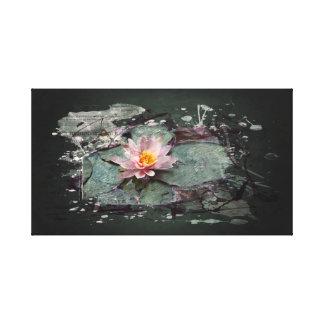 Impressão Em Tela Water Lily - Lotus flor, rosa de lago no estanque