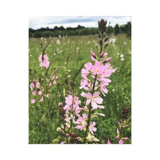 Impressão Em Tela Wildflowers cor-de-rosa