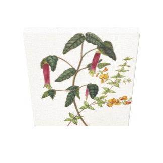 Impressão esticado pimentos das canvas do vintage impressão de canvas envolvida