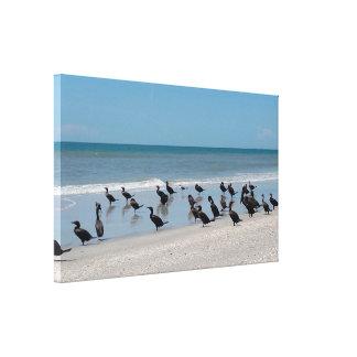 Impressão esticado praia das canvas do pelicano