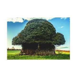 Impressão irlandês das canvas da casa do cogumelo