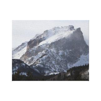 Impressão nevado das canvas do dia