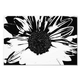 Impressão preto e branco do girassol arte de fotos
