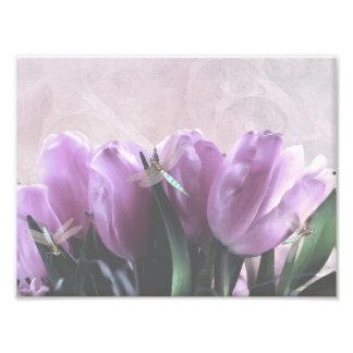 Impressão roxo das libélulas do Aqua das tulipas Impressão Fotográfica
