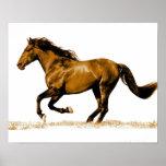Impressão Running do poster do cavalo
