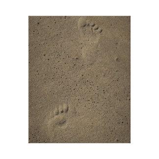Impressões do pé na areia em Virginia Beach