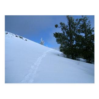 Impressões do sapato de neve cartão postal