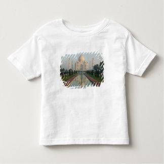 INDIA, Uttar Pradesh, Agra: Taj Mahal, manhã T-shirts