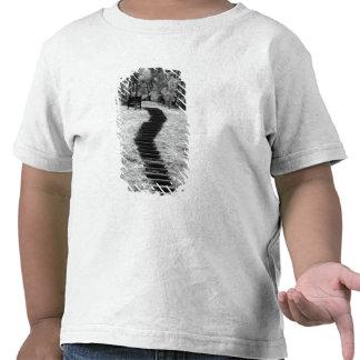 Infravermelho de construções e de fugas das t-shirt