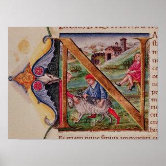 """Inicial """"N"""" de Historiated que descreve carneiros Poster"""